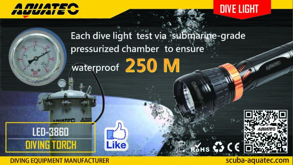 Dive Light